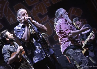 XVI Ed - 18.07.2015 - TREVES BLUES BAND (11)