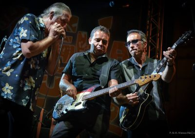 XVI Ed - 18.07.2015 - TREVES BLUES BAND (15)
