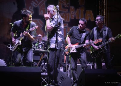 XVI Ed - 18.07.2015 - TREVES BLUES BAND (16)