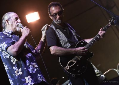 XVI Ed - 18.07.2015 - TREVES BLUES BAND (3)