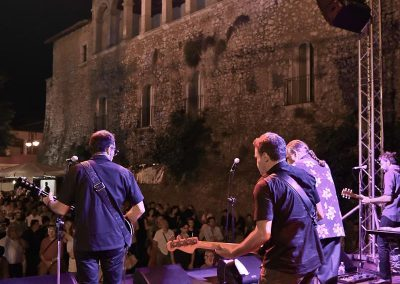 XVI Ed - 18.07.2015 - TREVES BLUES BAND (5)